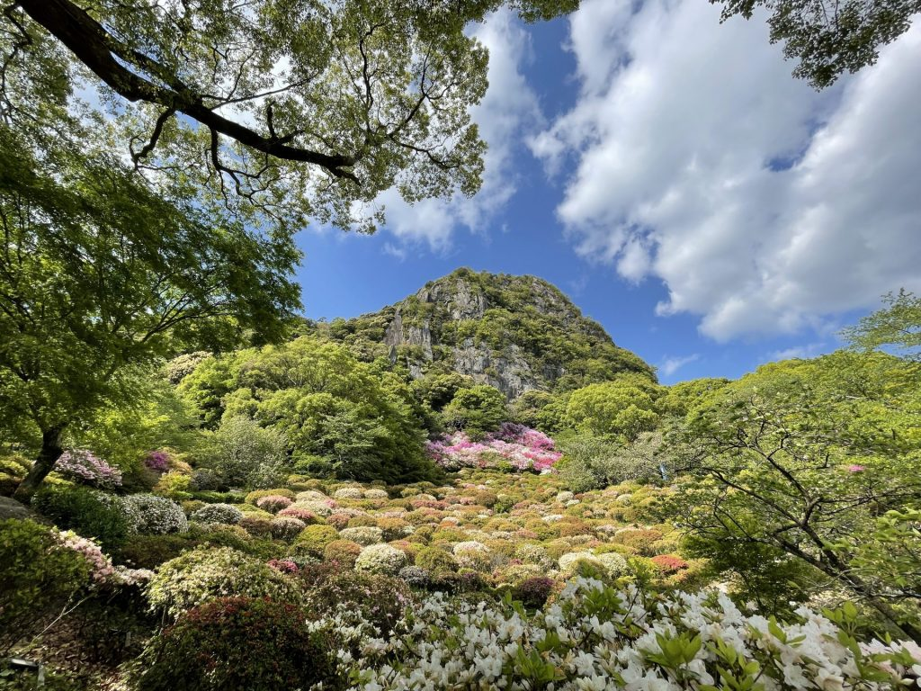 This the Tsutsuji garden of Mifuneyama Rakuen.
